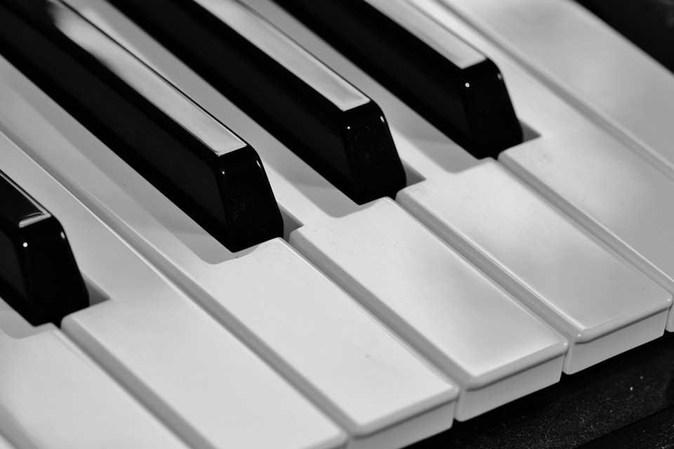 תיקון אורגנים,פסנתרים חשמליים,סינטיסיירים ומקלדות שליטה